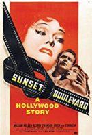 Sunset Boulevard 1950 Türkçe Dublaj izle – Efsane Romantik Filmler