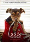 Sadık Dostum 2019 Türkçe Dublaj izle – Köpek Hayvan ve İnsan Dostluğu Filmi