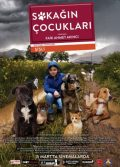Sokağın Çocukları 2019 yerli dram filmi hayvan sevgisi full hd izle