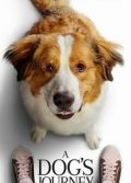 A Dog's Journey full hd izle Köpek Dostluğu tek part filmleri
