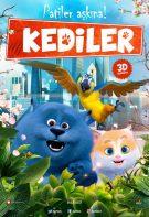 Kediler 2019 Çin animasyon filmi Türkçe dublaj izle
