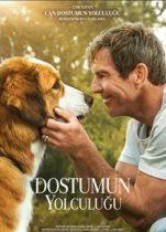 Dostumun Yolculuğu 2019 hayvan filmi Türkçe dublaj izle