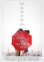 New York'ta Yağmurlu Bir Gün 2019 tek parça izle